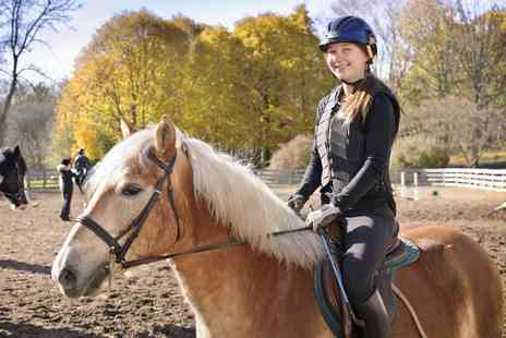 Fitzworthy Equestrian Centre - Up to Ten Pony Club Sessions - Save 0%