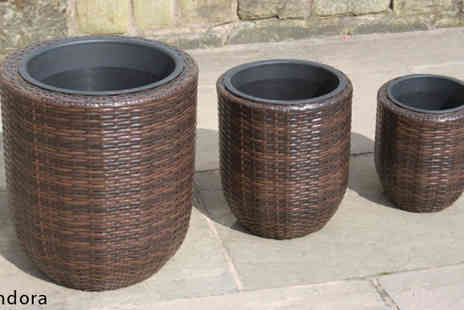 Limitless Base - Pandora Trio Rattan Planters - Save 76%