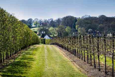 Hush Heath Winery - Kent Vineyard Tour with Tastings & Lunch for 2 - Save 56%