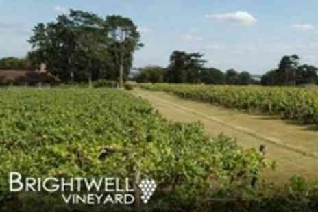Brightwell Vineyard - Wine Tasting and Vineyard Tour For Two - Save 53%