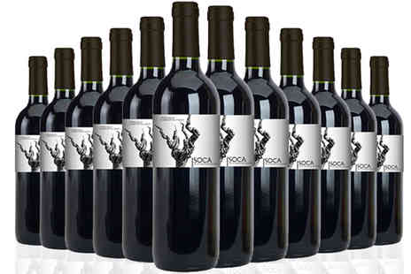 karpedeal - 12 bottles pack Soca Young Red Wine Plus Aerator - Save 48%