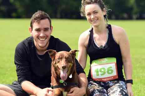 Dog Jog - Dog Jog on 15 July To 29 October - Save 38%