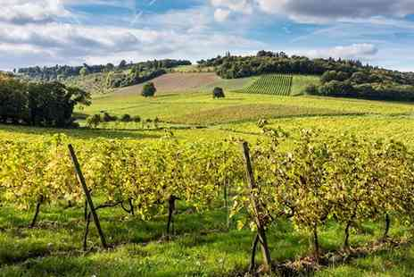 Denbies Wine Estate - Surrey vineyard train tour with bubbly for 2 - Save 57%
