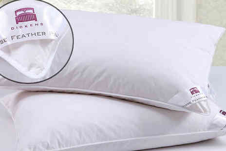 Fusion - 2 or 4 Dickens Goose Feather & Down Pillows - Save 89%