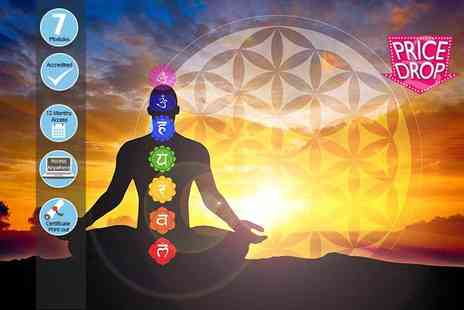 KEW training academy - Online chakras and your energy body course - Save 86%