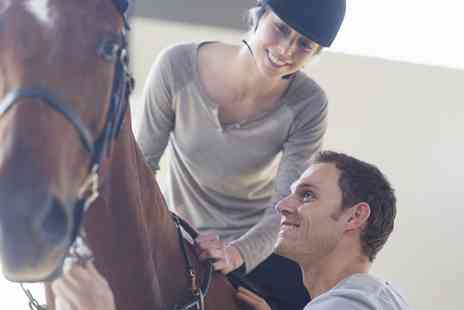 Malvern Riding School - 15 Minute Horse Riding Taster Session - Save 30%