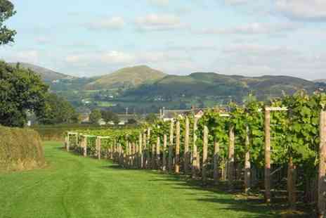 Kerry Vale Vineyard - Self Guided Vineyard Tour and Wine Tasting with Food for Up to 12 - Save 0%
