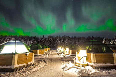 Aurora Borealis, Glass Igloo, Husky & Reindeer in Finland - Winter Wonderland Filled with Snowy Adventures - Save 0%
