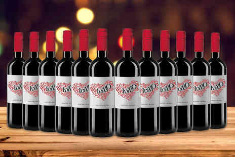 San Jamon - 12 bottle selection of Idilio red or white wine - Save 56%