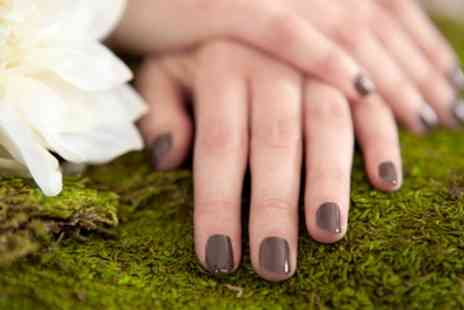 Venus Nails and Beauty - Shellac Polish with Optional Manicure - Save 40%