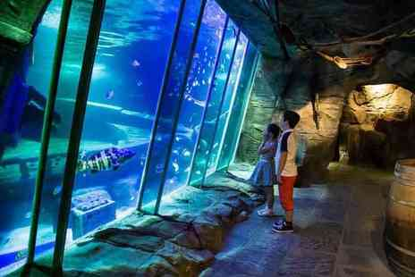 Exploris - Exploris Aquarium experience for one person with a main course lunch - Save 23%