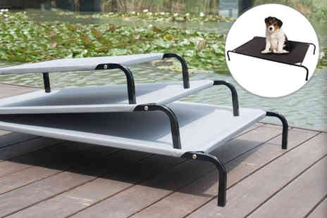 Premier Exports - Small waterproof elevated dog bed - Save 67%