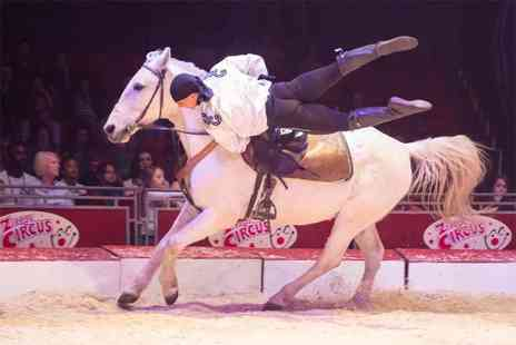 Zippos Circus - Side or front view ticket to see Zippos Circus with popcorn - Save 41%