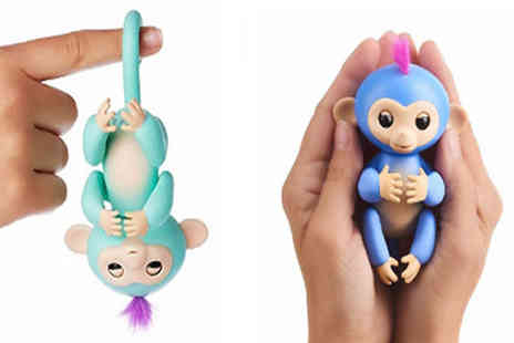 Morag online - Interactive Finger Pet Monkey in 6 Colours - Save 68%