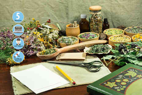 Skill Success - Online introduction to herbalism - Save 91%