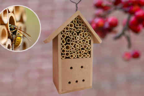 DML Solutions - Bamboo Stick Insect House For Bees - Save 55%