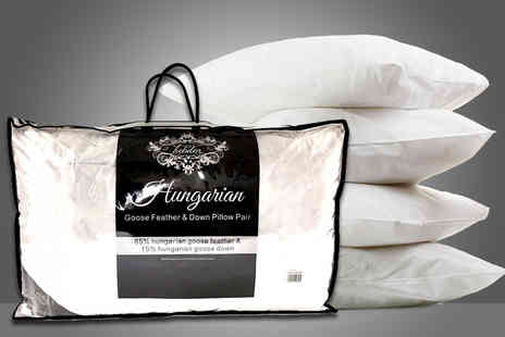 Direct Warehouse  - Pair of Hungarian goose feather and down pillows - Save 79%
