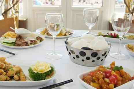 The Ocean Palace - Two Course Chinese Lunch for Two or Four - Save 52%