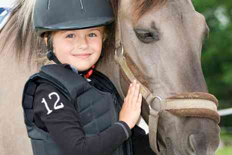 Hundleby Riding Centre - Up to Two One Hour Group Horse Riding Lessons for One or Two - Save 50%