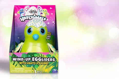 Sambro International - Hatchimals wind up egglider toy - Save 33%