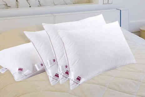TLD Marketing - Luxury Duck Feather Pillows - Save 86%