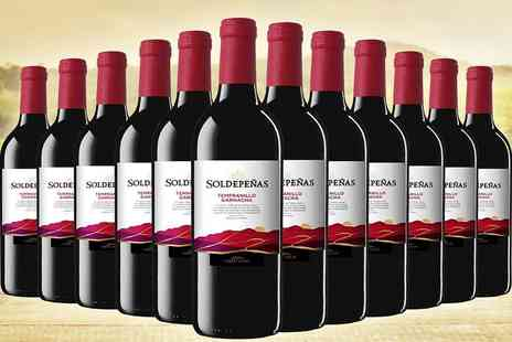 Easy Gifts - 12 bottles of Castillo Soldepenas red wine - Save 60%