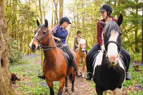 Eastmoors Riding School And Livery - 30 or 60 Minute Escorted Woodland Trek for Up to Four - Save 30%