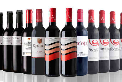 San Jamon - Rioja Dreams Are Made Of This 12 Bottles - Save 59%