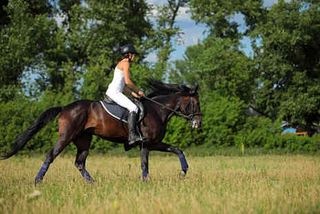 Easterton Stables - Two 60 minute horse riding lessons - Save 55%