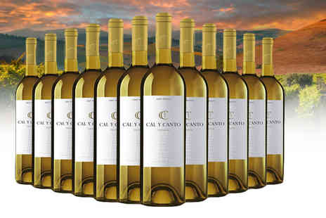 Easy Gifts - 12 bottles of white Cal Y Canto wine - Save 66%