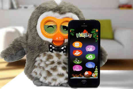 Craze - Interactive Owl Smart Pet - Save 60%
