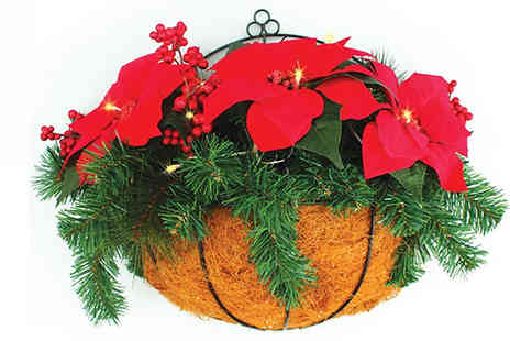Jersey Plants Direct - Led Christmas Wall Basket with Poinsettias With Free Delivery - Save 26%