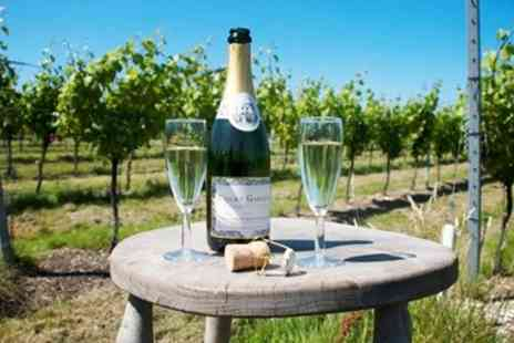 Court Garden Vineyard - East Sussex winery tour including tastings for 2 - Save 28%