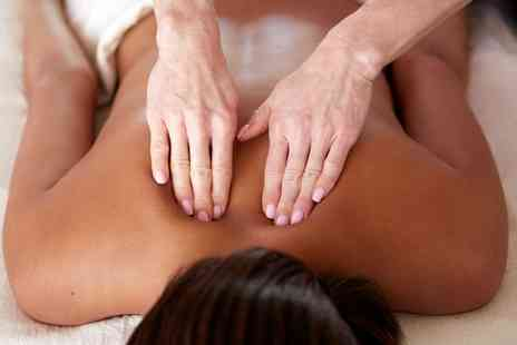 Back to Health Chiropractic - One Hour Deep Tissue Massage - Save 68%