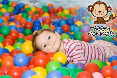Cheeky Monkeys Indoor Soft Play Centre - Family Meal and Entry to Play Area - Save 52%