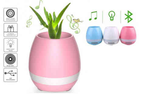 Toys Wizard - Magic smart music playing flower pot choose from three colours - Save 78%