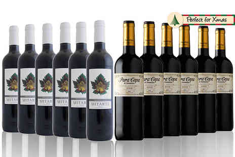 San Jamon - Rioja wine collection receive six bottles of two different varieties of Rioja wine - Save 52%