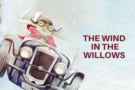 The Albany Theatre Trust - Concession ticket or dult ticket or family ticket to Wind in the Willows pantomime - Save 44%