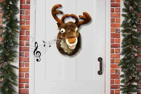 Craze UK - Singing Reindeer Ray - Save 50%