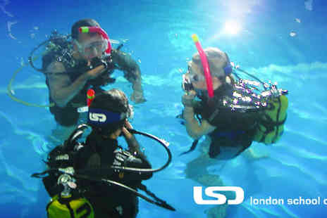 London School of Diving - 90 minute Scuba Diving Experience - Save 50%