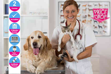 Oplex Careers - Accredited online veterinary assistant and animal nursing course bundle - Save 97%
