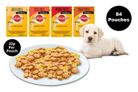 Trojan Electrical - 84 packs of Pedigree dog food pouches in gravy - Save 22%