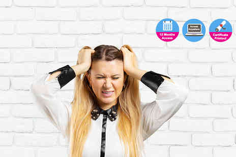 Vizual Coaching - Online anger management course - Save 89%