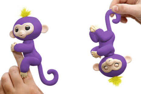 DML Solutions - Interactive Finger Pet Monkey with Optional Gym Stands Available in Six Colours - Save 70%