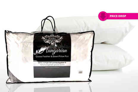 Home Furnishing Company - Pair of Hungarian goose feather and down pillows - Save 82%
