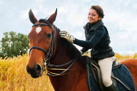 Matchmoor Riding Centre - Private 30 minute horse riding lesson and one hour scenic trek for one or two - Save 51%