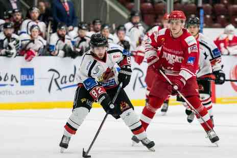 Cardiff Fire IHC - Ticket to Cardiff Fire Double Fixture on 13 January - Save 29%