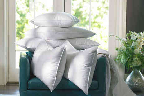 Home Furnishings Company - Two duck feather hotel quality pillows - Save 89%
