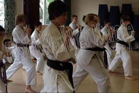 Black Panther Karate - Four karate classes for kids or adults - Save 50%