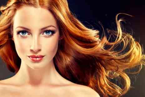 Hair at Monroes - Cut and Blow Dry with Half Head of Highlights or Full Head of Colour with Hair - Save 65%